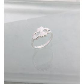 eJOYA Kalpli Gümüş Yüzük 84900