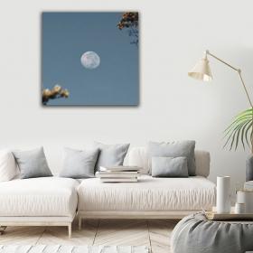 eJOYA Modern Tasarım Ay Kanvas Tablo 50 x 60 cm 91048