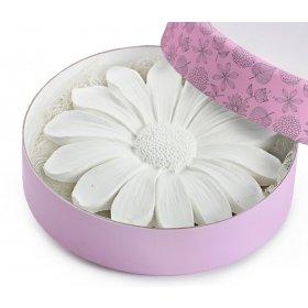 eJOYA Çiçek Kokulu Taş Hediye Paketi
